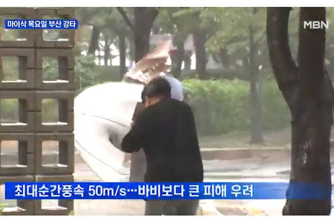 출처: MBN 뉴스 캡처