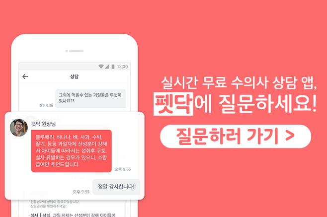 출처: 출처: 펫닥 petdoc.co.kr