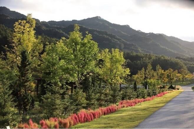 출처: 국립백두대간수목원