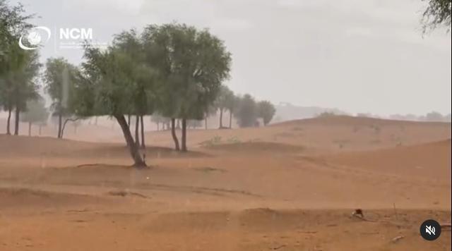 아랍에미리트(UAE) 사막에 인공비가 내리는 모습. UAE 기상청 인스타그램 캡처