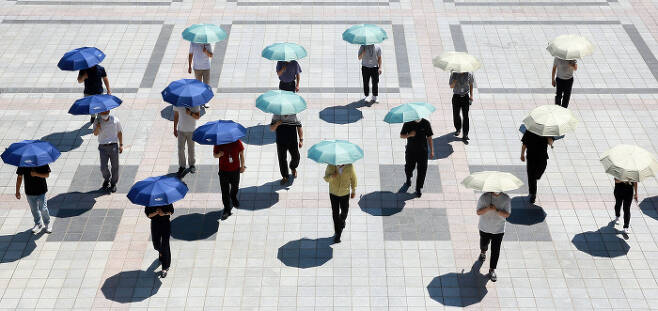 대전 서구 직원들이 구청 광장에서 양산을 쓰고 있다. 대전 서구 제공.