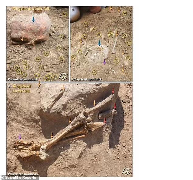 게다가 이 지역에서는 인간 두개골을 포함한 인골이 다수 발견됐는데 당시 폭발이 근처에 있던 사람들에게 극심한 탈골과 골격 파편화를 일으켰다고 연구진은 논문을 통해 설명했다. 이 중 한 두개골의 색깔은 주황색을 띄는데 이는 200℃ 이상의 기온에 노출됐음을 시사한다고 이들 연구자는 덧붙였다.(사진=사이언티픽 리포트)