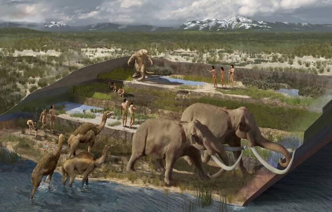 2만3000년 전 발자국 화석이 발굴된 지층에서는 메머드 같은 대형 포유류 화석들도 나왔다. 당시 인류가 이곳에서 사냥을 했을 가능성이 있다고 연구진은 추정했다./미국 본머스대