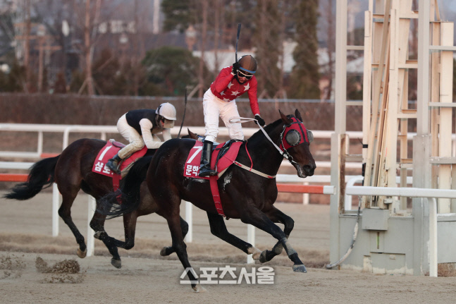 '문학치프'가 2019년 그랑프리에서 가장 먼저 결승선을 통과하고 있다. 제공   한국마사회